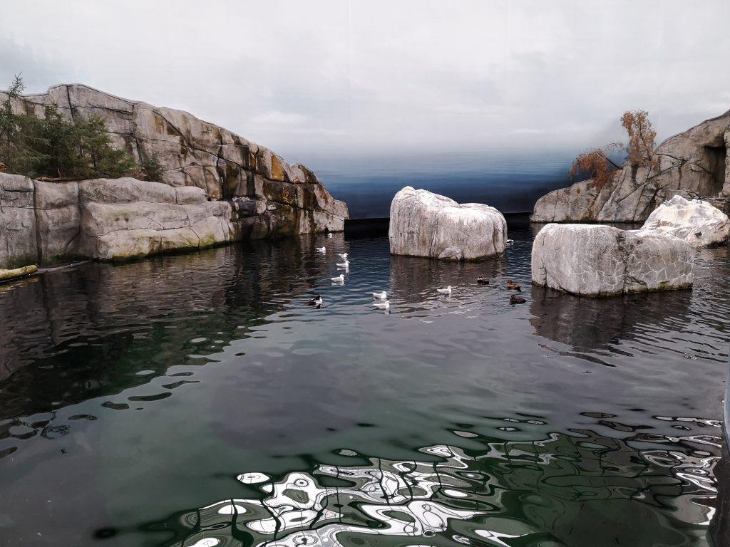 Golfe du Saint-Laurent Biodôme