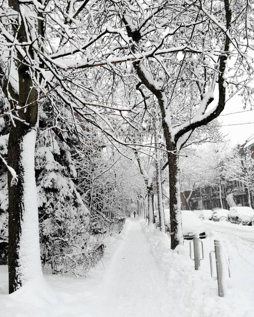 rue après tempête de neige