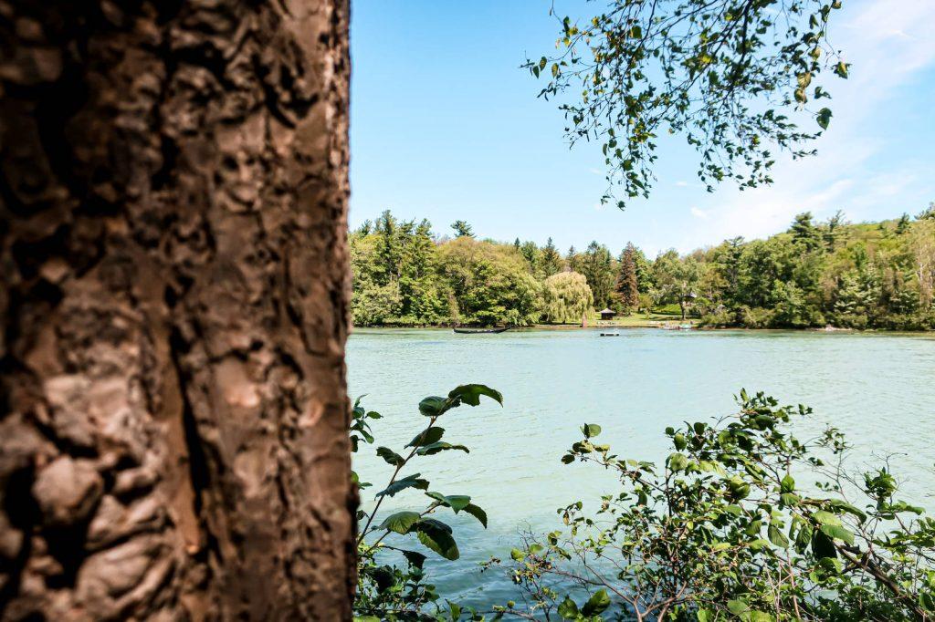 Lac Mont Saint Bruno